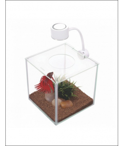 Marina Betta Kit Cubus -...